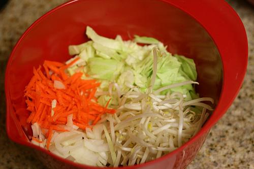Cabbage Stir Fry with Turkey/Beef Mix