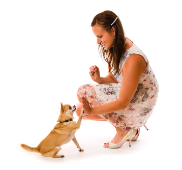 woman training her dog, white background
