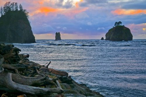 This is an image of first or second beach in Forks Washington, a beach that is written about in the Twilight Saga series of books.