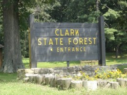 clark forestry