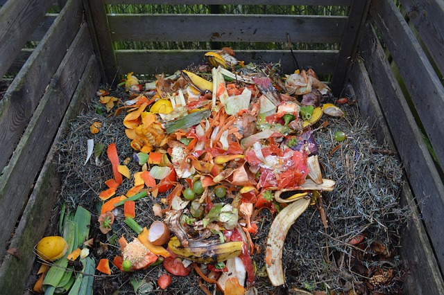 Before You Start Composting, Check Out This Article
