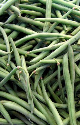 Store Green Beans and Save Money