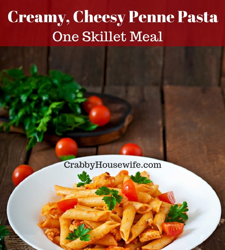 Plate of creamy skillet penne pasta made in a single pan.