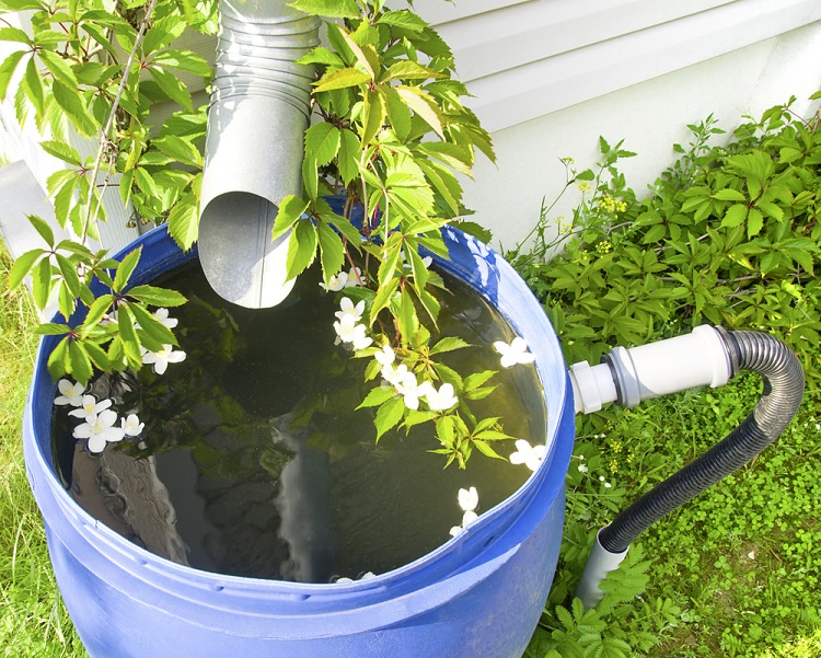 How Do You Make a Cheap Rain Barrel at Home?